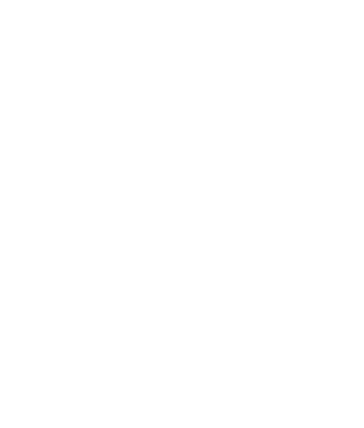 Image of a shield